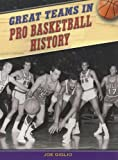 Great Teams in Pro Basketball History, Joe Giglio, 1410914925