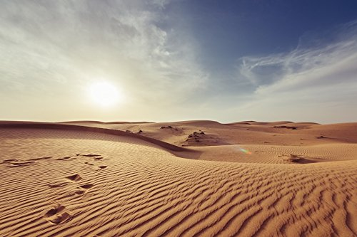 Price comparison product image Home Comforts Peel-n-Stick Poster of Hot Landscape Barren Nature Dawn Dry Arid Desert Poster 24x16 Adhesive Sticker Poster Print
