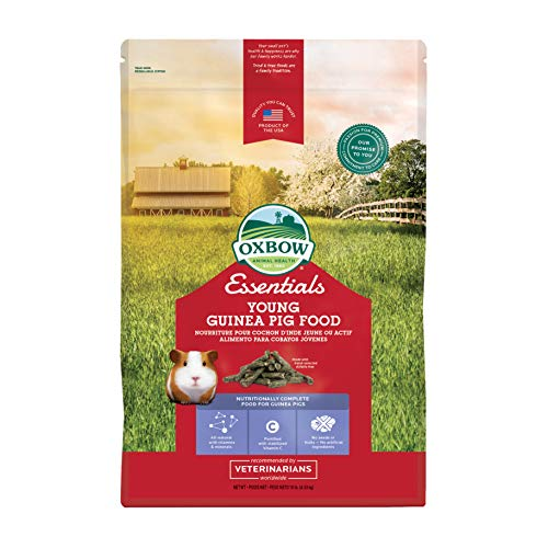 Oxbow Essentials Young Guinea Pig Food, Premium Diet for Young Guinea Pigs, Alfalfa Hay, Made in The USA, 10 Pound Bag
