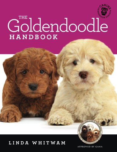 The Goldendoodle Handbook: The Essential Guide For New & Prospective Goldendoodle Owners (Canine Handbooks) by CreateSpace Independent Publishing Platform