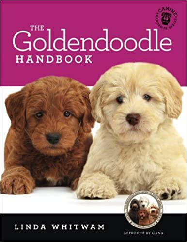The Goldendoodle Handbook The Essential Guide For New Prospective Goldendoodle Owners Canine Handbooks Linda Whitwam 9781535247290 Amazon Com Books