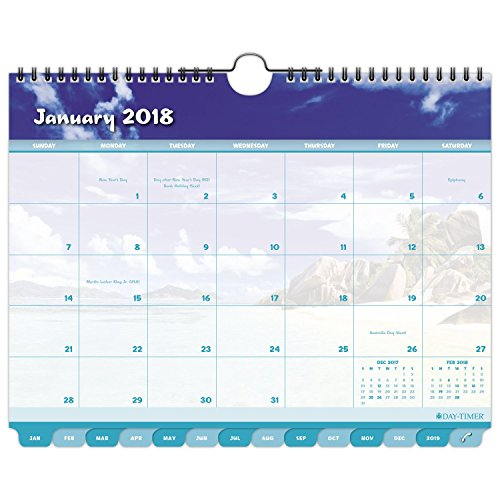 "Day-Timer Monthly Wall Calendar, Tabbed, January 2018 - December 2018, 11"" x 8-1/2"", Coastlines (11352-1801)"