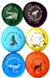 Lifeforce Glass Fun Puns, Six Silly Stones Perfect for Kids or Geocaching, Set I
