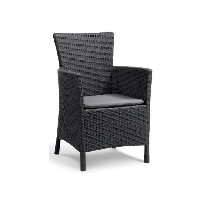 516CfkSJNgL Incluye un cojín en el asiento y respaldo ergonómico. Sillón para interior y exterior, ideal para jardines, terrazas, porches y otros espacios de entretenimiento. Acabado de ratán plano plano, duradero, resistente al clima y a la corrosión.