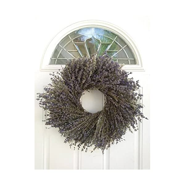 Marseille Natural Dried Lavender Wreath – Fragrant and Beautiful Real Wreath For Decorating Or Gifting – Grown and Handcrafted In USA – 17.5 Inches – Display In Summer, Spring, Fall, And Winter