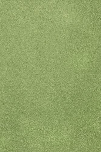 Home Cool Solid Colors Wind Dancer Collection Area Rugs Lime Green - 2'x4'