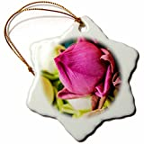 3dRose Danita Delimont - Flowers - Thailand, Chiang Mai, Flowers at the Thai Market Place - 3 inch Snowflake Porcelain Ornament (orn_276974_1)