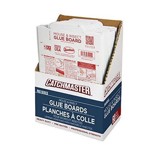 Catchmaster 60m Bulk Packed Mouse Insect and Snake Glue Boards, 60-Pack (Catchmaster Glue Boards)