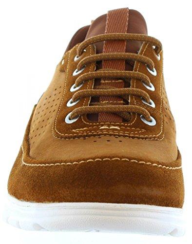 Zapatos de Hombre PANAMA JACK DAVOR C3 NOBUCK CUERO