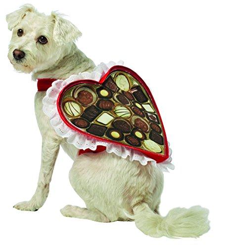 Rasta Imposta Chocolate Box Dog Costume, -