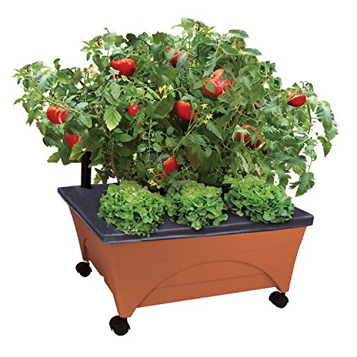 City Picker Raised Bed Grow Box - Self Watering and Improved Aeration - Mobile Unit with Casters