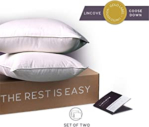 Lincove White Down Luxury Sleeping Pillow Set of 2-800 Fill Power, 600 Thread Count Cotton Cover (Standard - Medium)