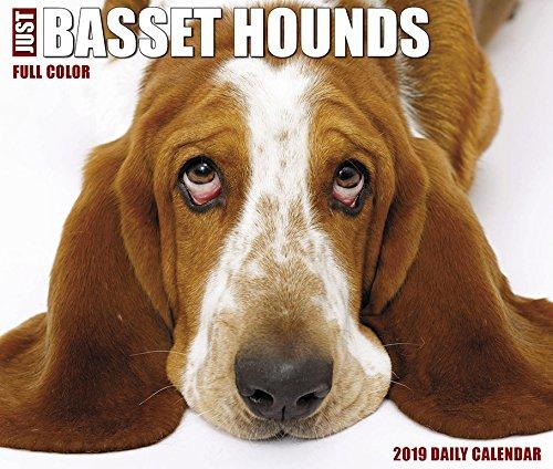 Just Basset Hounds 2019 Box Calendar (Dog Breed Calendar)