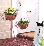 Gift Included- Decorative 2 Metal Flamingo Outdoor Garden Bird Planter Coconut Fiber Basket Holder + FREE Bonus Water Bottle by Home Cricket Homecricket