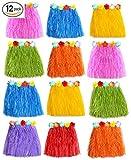 Supply Friend Hawaiian Hula Grass Skirts