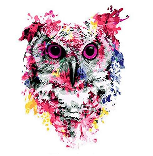 respuestas rápidas Tworidc5-50x70cm Framed UPUPUPUP Abstract Owl DIY Pintura por Números Animal Animal Animal Pintura de la Lona Decoración para El Hogar Pintado A Mano Ciervos Arte de la Parojo Imagen Decoración de la Boda, Tworidc5-50X70Cm Enmarcado  directo de fábrica