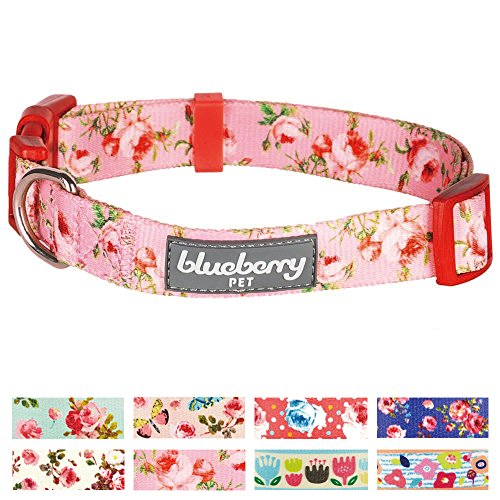 "Blueberry Pet 8 Patterns Spring Scent Inspired Floral Rose Baby Pink Dog Collar, Medium, Neck 14.5""-20"", Adjustable Collars for Dogs"