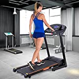 MD Group Folding Treadmill Running Fitness Machine 2.5 HP Electric Motorized Power Exercise Walking