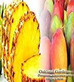 PINEAPPLE MANGO Fragrance Oil - 100% Premium Grade Uncut Oil - Sweet Pineapple blended with Tropical Mango, mixed with a hint of Lotus and Warm Vanilla - Fragrance Oil By Oakland Gardens