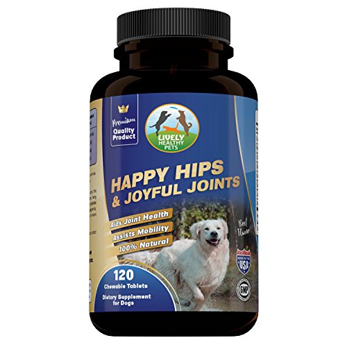 Cosequin New (Glucosamine for Dogs, Hip and Joint Supplement by Lively Healthy Pets, Chondroitin, MSM, and L-Glutathione, for Optimal Joint Health and Pain Relief Caused by Arthritis, Premium Beef Flavored Treat)