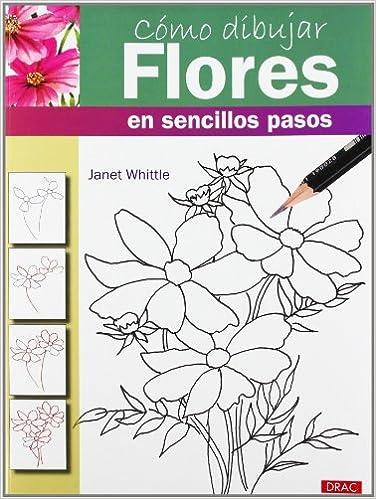 Como Dibujar Flores En Sencillos Pasos 9788498743173 Books Amazonca