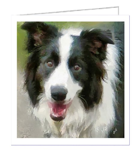 Border Collie - Archie - Set of 6 Notecards with Envelopes By Doggylips