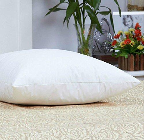 Luxuredown White Goose Down Pillow, Firm - Queen Size