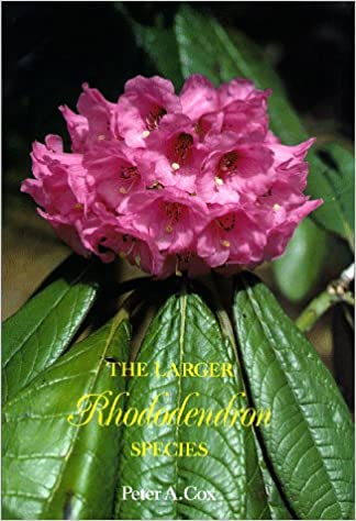 The Larger Rhododendron Species Peter A Cox N E Kenneth