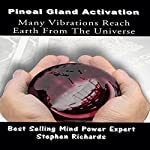 Pineal Gland Activation: Many Vibrations Reach Earth from the Universe | Stephen Richards