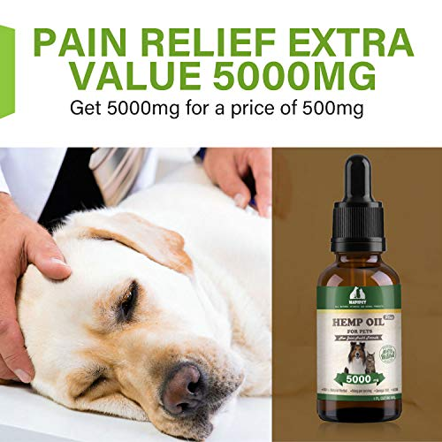 516DS5nf63L - HAPIPET Hemp Oil for Dogs Cats Pets,100% Pet Hemp Oil, 5000MG for Hemp Oil Stress Sleep Aid, Supports Hip & Joint Health, Grown & Made in USA-Omega 3, 6 & 9
