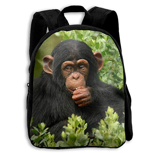FIDALJF Cute Monkey Chimpanzee Children's Backpack Little Kid School Bag with Adjustable Shoulders Ergonomic Back Pad Perfect for School, Security, Sporting Events