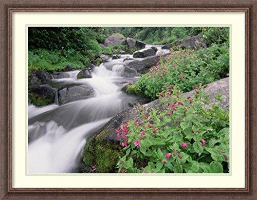 Framed Art Print 'Paradise River surrounded by spring flowers, Mt Rainier National Park, Washington' by Tim (Stream Mt Rainier National Park)