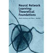 Neural Network Learning: Theoretical Foundations