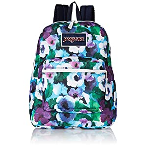 JanSport Overexposed Backpack - 1550cu in Multi Watercolor Floral, One Size