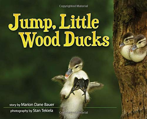 (Jump, Little Wood Ducks (Wildlife Picture Books))