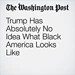 Trump Has Absolutely No Idea What Black America Looks Like | Eugene Robinson