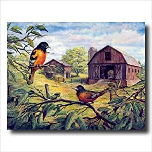 Oriole Birds Wood Barn Country Animal Wall Picture 16x20