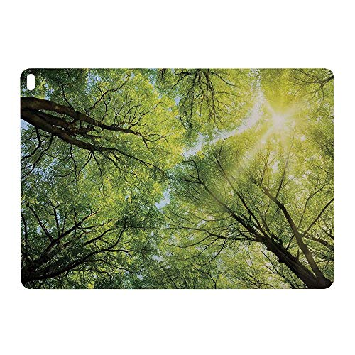 "Slim Painted Case for Apple iPad pro 10.5"" 2017 A1701 Smart Cover Soft TPU Leather Auto Sleep,Sun Through The Canopy of Tall Beech Trees Romatic"