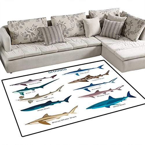 Shark Kids Carpet Playmat Rug Collection Types of Sharks Bronze Whaler Piked Dogfish Whlae Shark Maritime Design Door Mats for Inside Non Slip Backing 36