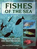 Front cover for the book Fishes of the Sea: The North Atlantic and Mediterranean by John Lythgoe