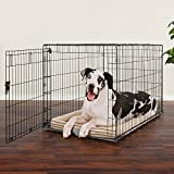 You & Me 1-Door Training Crate 48″, XX-Large, Black For Sale