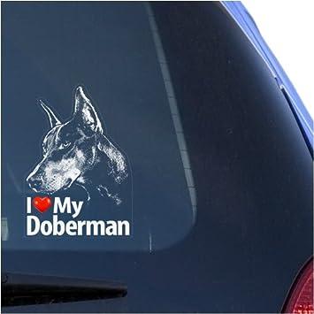I Love My Doberman! DC1299HEA High Quality Adhesive Vinyl Window Decal Sticker