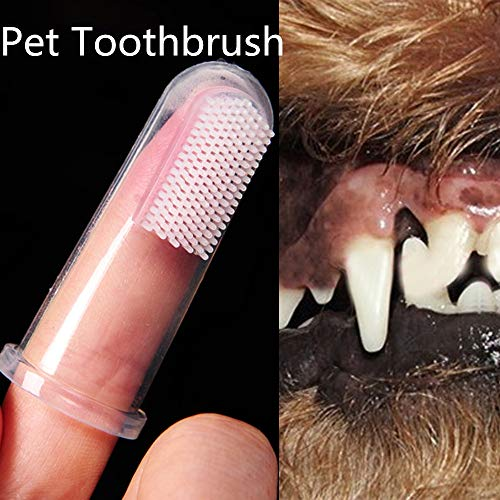 Super Soft Pet Finger Toothbrush Teddy Dog Brush Bad Breath Tartar Teeth Tool Clean Pet Teeth Silica Gel Toothbrush Puppy Toothbrush Cat Toothbrush Small Dog Toothbrush (White) by succeedtop (Image #1)