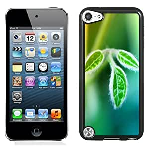 Beautiful Custom Designed Cover Case For iPod Touch 5th With Green Young Leaves Phone Case