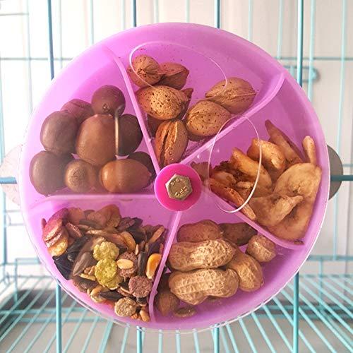 Buy parrot foraging feeder