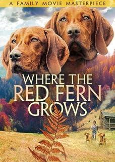 Amazon Where The Red Fern Grows Joseph Ashton Dave