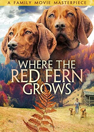 Image result for where the red fern grows
