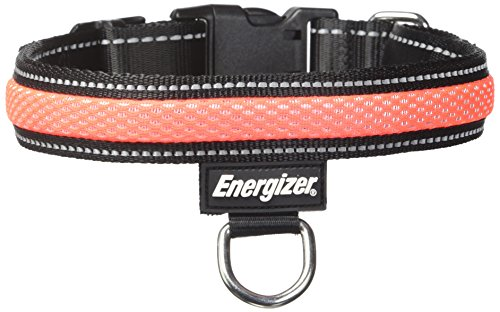 Energizer Blaze Collar Medium Orange