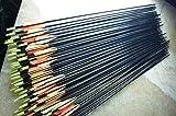 **24x 82CM Archery hunter Nocks Fletched Arrows Fiberglass Target Practice Arrow