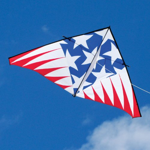 Into The Wind 12-ft Highlighter USA Single Line Delta Kite by Into The Wind